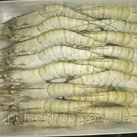Креветка тигровая 16-20, сырая, Вьетнам
