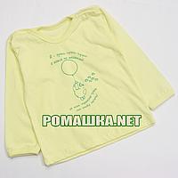 Детский реглан р. 74 для мальчика тонкий ткань КУЛИР 100% хлопок ТМ Авекс 4027 Желтый
