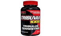 Бустер тестостерона SAN Tribuvar 1000 (180 tabs)