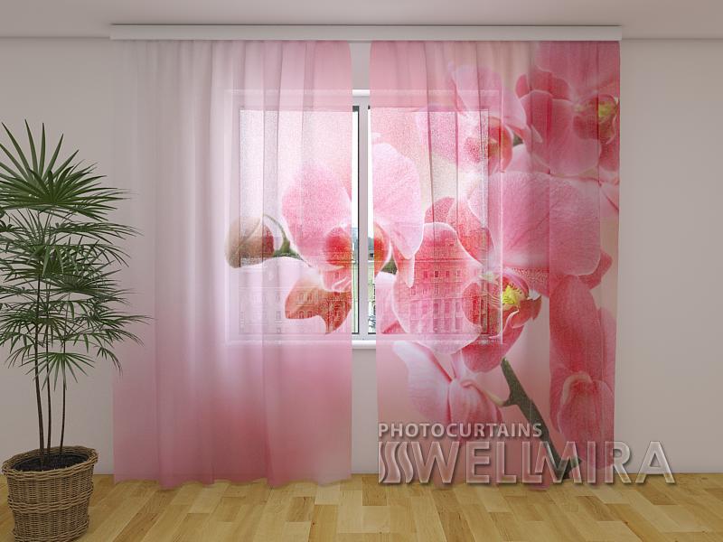 ФотоТюль Розовая орхидея