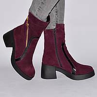 Сапоги-ботинк на низком каблуке, из натуральной кожи, замша на молнии. Пять цветов! Размеры 36-41 модель S2520, фото 1