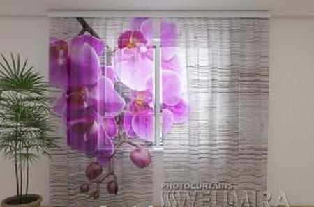 ФотоТюль Орхидеи и дерево 2