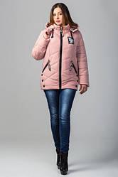 Женская демисезонная куртка батальные размеры канада цвет пудра размер 52 54 56 58 60 62 64