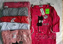 Туника для девочки на 5-8 лет малина,персик,серого,белого цвета кошечка оптом