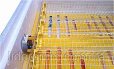 Модуль (механизм) автоматического переворота яиц Рябушка 48 яиц с терморегулятором и таймером, фото 3