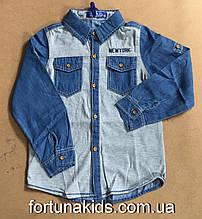 Джинсовые рубашки для мальчиков S&D 1-5 лет