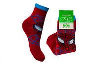 Детские хлопковые носки «Кузя Спайдер» 14