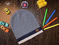 Демисезонная шапка для мальчика со значком Польша бежевая полоска, фото 1