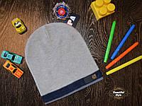 Демисезонная шапка для мальчика со значком Польша серая, фото 1