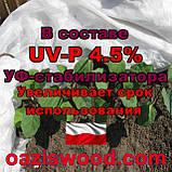Агроволокно р-23g 6.35*200м біле UV-P 4.5% Premium-Agro Польща посилені краю, фото 5