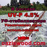 Агроволокно р-23g 6.35*200м біле UV-P 4.5% Premium-Agro Польща посилені краю, фото 9
