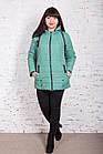 Весенняя женская куртка батальных размеров модель 2018 - (кт-267), фото 2
