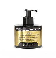 Маска тонирующая COLOR UP (золотая) Echosline 250 мл