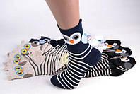 Женские носки с мордочками Совушки, Сова, фото 1