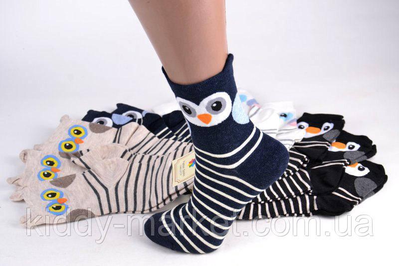 Женские носки с мордочками Совушки, Сова