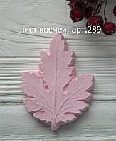 Молд лист космеи