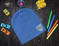 Демисезонная шапка для мальчика с эмблемой Польша синий, фото 1