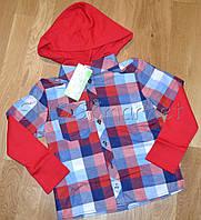 Рубашка Клетка для мальчика р.104-122, фото 1