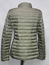"""Яблоко""-демисезонная куртка 8033 оливка, фото 3"