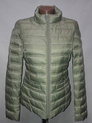 """Яблуко""-демісезонна куртка 814 оливка, фото 2"
