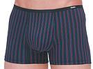 Трусы мужские Taso 5590 в цветную полоску хлопок+бамбук (оптом)