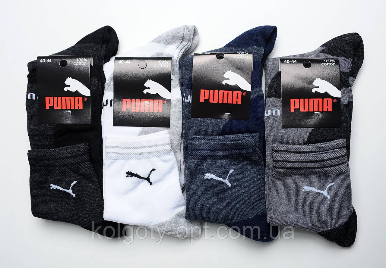 Спортивные мужские носки «Спорт+»