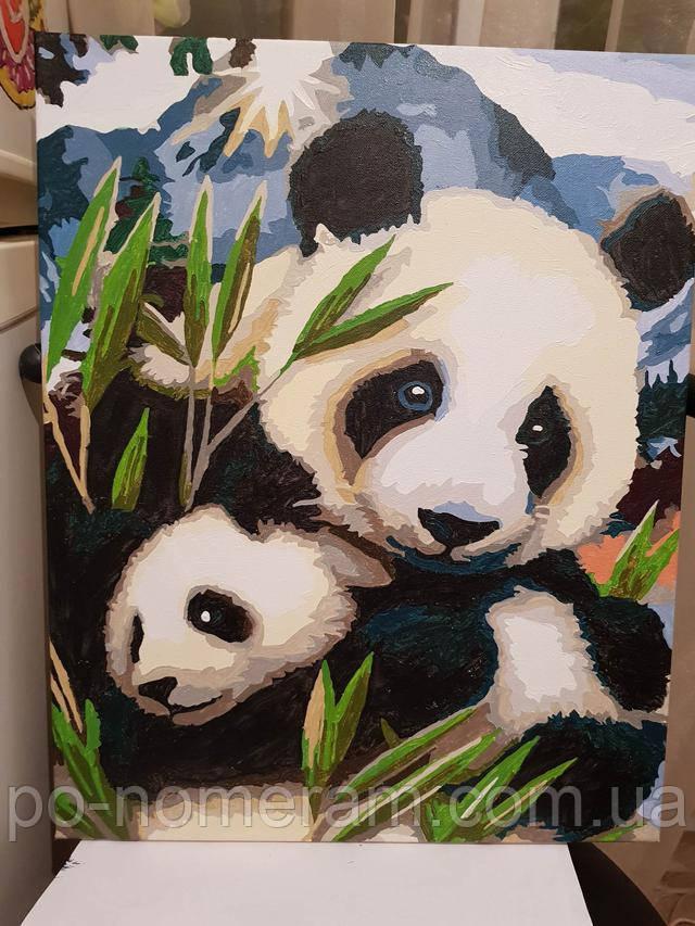 Картина по номерам панда