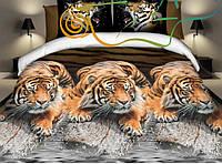 Ткани для постельного белья бязь Ранфорс №137
