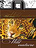 Полиэтиленовые пакеты с петлевой ручкой 37x42 см / (уп-25 шт)
