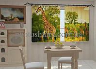 Фотоштора Жирафы в кухне