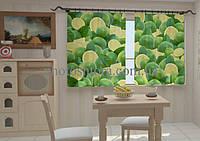 Фотоштора Лимоны в кухне