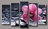 Картина модульная HolstArt Орхидея на камнях 6 120*200см 5 модулей арт.HAB-125
