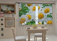 Фотоштора Белые ромашки в кухне