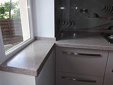 Стільниця з мийками з акрилу Tristone ST105, фото 3