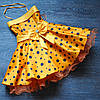 Нарядное  платье в горох для девочки.Стиляги.