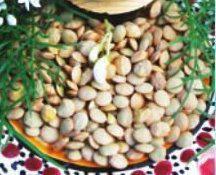 Семена Чечевици, фото 2