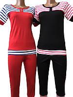 Летний женский спортивный костюм 008 Нинэль, футболка и бриджи, хлопок. р.р.40-54