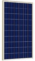 Солнечная батарея Risen RSM60-6-260Р (Поликристалл 260 Вт), фото 1