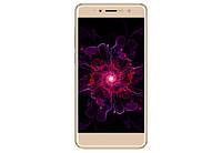 Мобильный телефон Nomi i5050 EVO Z  Gold, фото 1