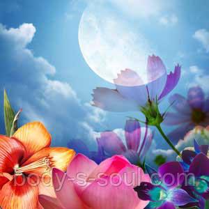 Косметические отдушки для мыла, свечей, косметики ручной работы Лунный цветок