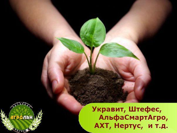 они поздравления защита растений блудницы