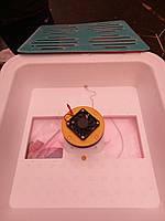 Инкубатор бытовой Рябушка Smart на 70 яиц  механический цифровой +вентилятор