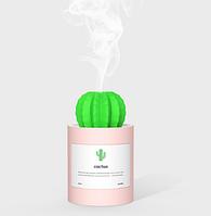 Увлажнитель воздуха SUNROZ Cactus Портативный увлажнитель воздуха Кактус, USB, 280 мл Розовый (SUN0292), фото 1