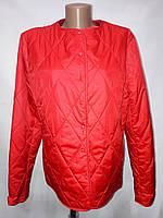 """""""button""""-демисезонная куртка 58-637 красный"""