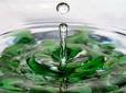 Живая вода. Бутылка 0,5 л. Дегустация.