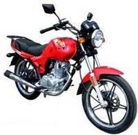 Успех популярности мотоцикла SKYMOTO BIRD 125.