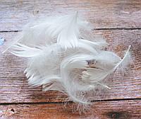 Білі пір'я, фото 1