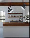 Светильник подвесной INDUSTRIAL graphite 5527, фото 2