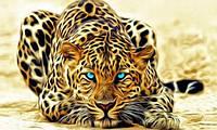 """Алмазная вышивка (набор) - """"Огненный леопард"""", фото 1"""