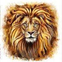 """Алмазная вышивка (набор) -""""Взгляд льва"""""""